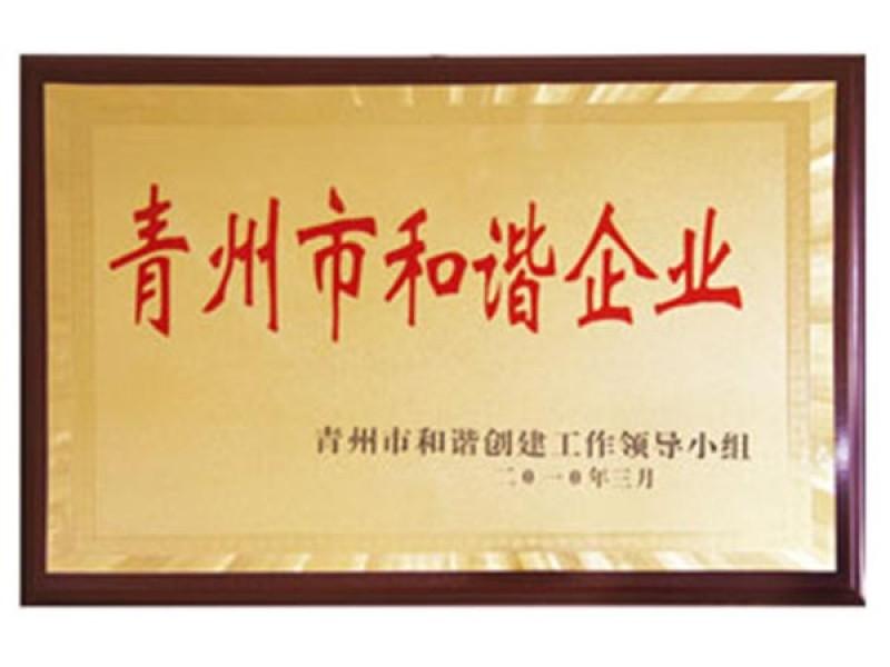 青州市和谐企业